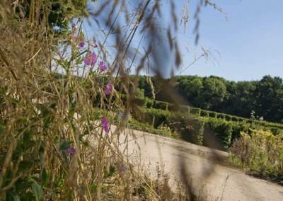 hampshire-hedges-site-viewev