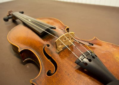 violin strings body