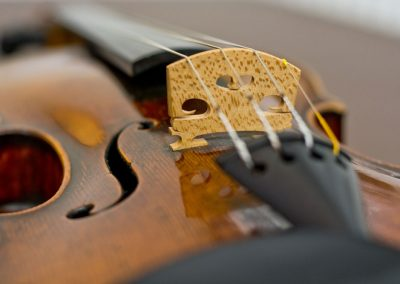 violin neck strings